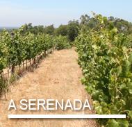 A SERENADA.png