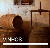 VINHOS.png